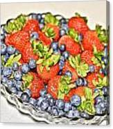 Fruity Day Canvas Print