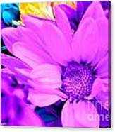 Fuchsia Flower Canvas Print