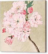 Fukurokuju - God Of Longevity - Vintage Watercolor Canvas Print
