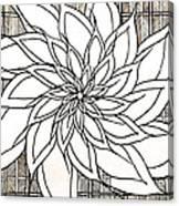 Full Bloom Iv  Canvas Print