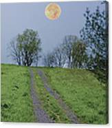 Full Moon And A Country Road Canvas Print