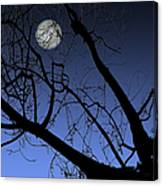 Full Moon And Black Winter Tree Canvas Print