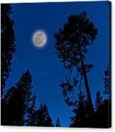 Full Moon In Yosemite Canvas Print