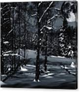 Full Moon Over Snowy Winter Landscape Canvas Print