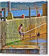 Fun At The Ferry Dock On Brier Island In Digby Neck-ns Canvas Print