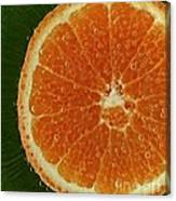 Fun With Fruit Orange Bubbles Canvas Print