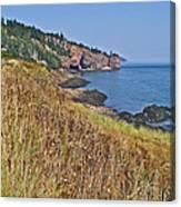 Fundy Bay Coastline Near Cliffs Of Cape D'or-ns Canvas Print