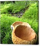Fungi Cup Canvas Print