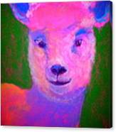 Funky Pinky Lamb Art Print Canvas Print