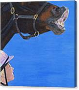 Funny Face - Horse And Child Canvas Print