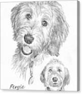 Furry Dog Friend Pencil Portrait Canvas Print