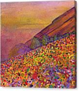 Furthur At Redrocks 2011 Canvas Print