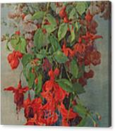 Fushia And Snapdragon In A Vase Canvas Print