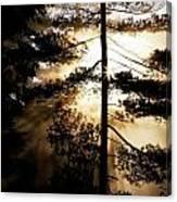 Fv5423, Perry Mastrovito Sunrise Though Canvas Print