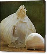 G Is For Garlic Canvas Print