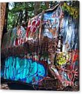Gaffiti In The Candian Forest Canvas Print