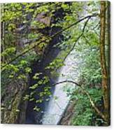 Gainfeld Waterfall In Spring Austria Canvas Print