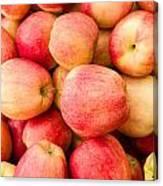 Gala Apples On Display Canvas Print