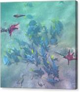 Galapagos Islands From Under Water Canvas Print