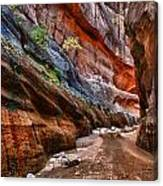 Gallery Of Color Canvas Print