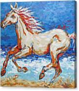 Galloping Horse On Beach Canvas Print