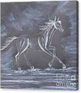 Galloping Horse Canvas Print