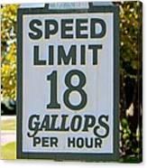 Gallops Per Hour Canvas Print