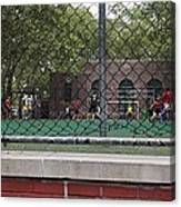 Game Behind The Fence Canvas Print