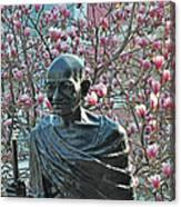 Union Square Gandhi With Magnolias Canvas Print