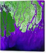 Ganges River Delta Canvas Print