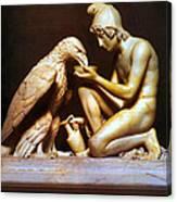 Ganymede Waters Zeus  Canvas Print