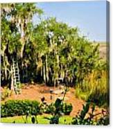 Garden And Marsh Canvas Print