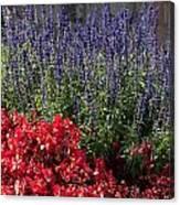 Garden At Yonah Mountain Canvas Print