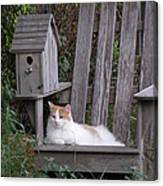 Garden Cat Canvas Print