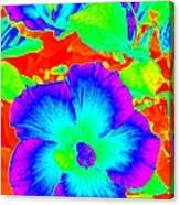 Garden Flowers / Solarized Effect Canvas Print