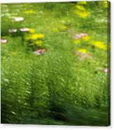 Garden Impressions Canvas Print