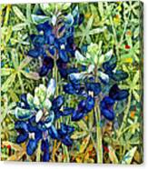Garden Jewels I Canvas Print