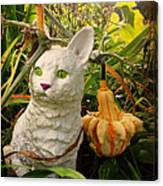 Garden Kitty In The Fall Canvas Print