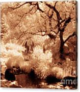 Garden Lily Pond Canvas Print