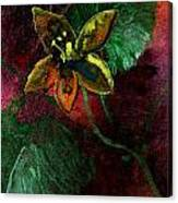 Garden Romance Canvas Print