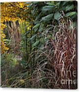 Garden Room With Golden Portal Canvas Print