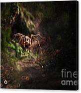Garden Stories Iv Canvas Print