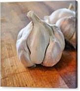 Garlic Cloves Canvas Print