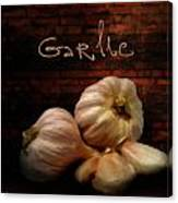 Garlic II Canvas Print