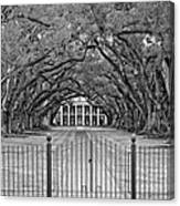 Gateway To The Old South Monochrome Canvas Print