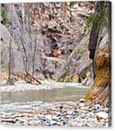 Gateway To The Zion Narrows Canvas Print