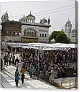 Gathering Inside The Golden Temple In Amritsar Canvas Print