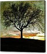 Gathering Place - No.1958 Canvas Print