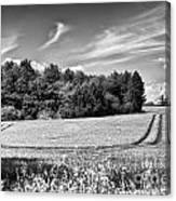 Gathering The Crop To Thaxted Mill Canvas Print