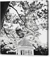Gazebo In Monochrome Canvas Print
